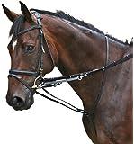 PFIFF Hilfszügel Thiedemann-Kombination