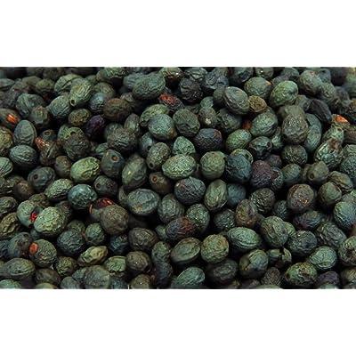 Turpentine Tree - Terebinth Tree (Pistacia terebinthus) 500 Fresh Seeds : Garden & Outdoor