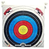 Morrell Youth Field Point Bag Archery Target - has NASP Rings, for Traditional or Youth Bows 30lbs and Less (Pack of 2.)