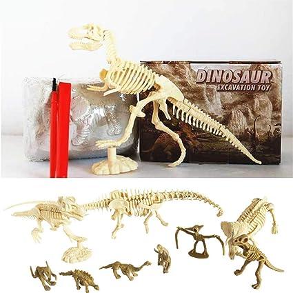 Amazon Com Dinosaur Kit De Excavación De Dinosaurios Y Fósiles Prehistóricos Para El Mundo De Las Criaturas De La Paleontología Arqueología Excavación Esqueletos De Dinosaurio Juguete Para Niños Toys Games