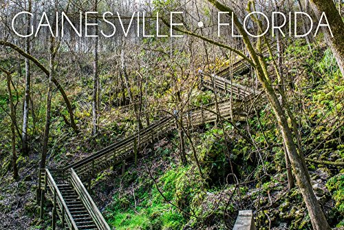 - Gainesville, Florida - Devil's Millhopper Geological State Park Stairway (36x54 Giclee Gallery Print, Wall Decor Travel Poster)