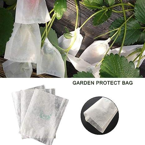 La Bolsa De Protección Para El Jardín La Planta Protección ...