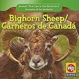 Bighorn Sheep, JoAnn Early Macken, 1433924994