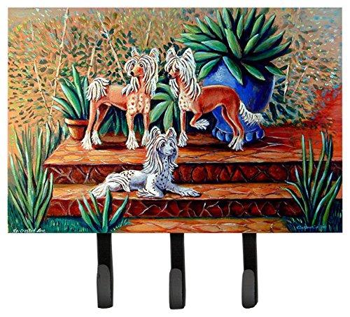 Caroline's Treasures 7505TH68 Chinese Crested Leash Holder or Key Hook, Large, Multicolor