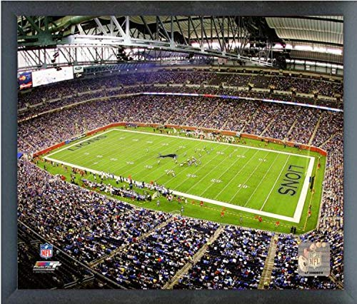 Ford Field Detroit Lions Stadium Photo (Size: 12
