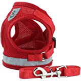 BLEVET Pet Vest Harness Adjustable Lead Chest Walking Leash for Dog Cat AU-PS041 (XS, Red)