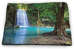 prunushome Dog Bed Dog Crate Mat Woodland Decor Machine Washable Pet Mattress Waterfall Thailand Jungle Tropic Plants Trees Waterscape Tourist Attraction for Pets Sleeping