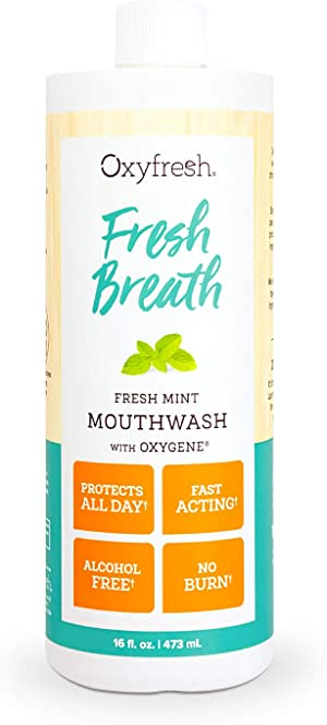 Oxyfresh Fresh Breath Fresh Mint Mouthwash – Dentist Recommended for Long-Lasting Fresh Breath & Healthy Gums   Alcohol & Fluoride Free (1-16 oz Bottle)