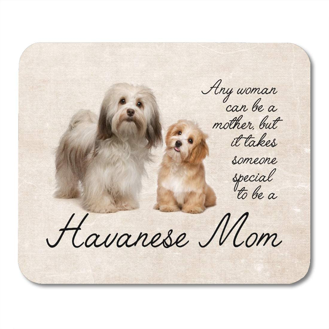 Aikul Mouse Pads Dog Havanese Mom Pet Animal Mother Puppy Mouse Mat 9.5 x7.9 Mouse Pad Suitable for Notebook Desktop Computers Office Accessories