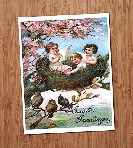 Babies in a Bird Nest Vintage Art Print - 8x10 Wall Art - Easter Decor - Strange Nests