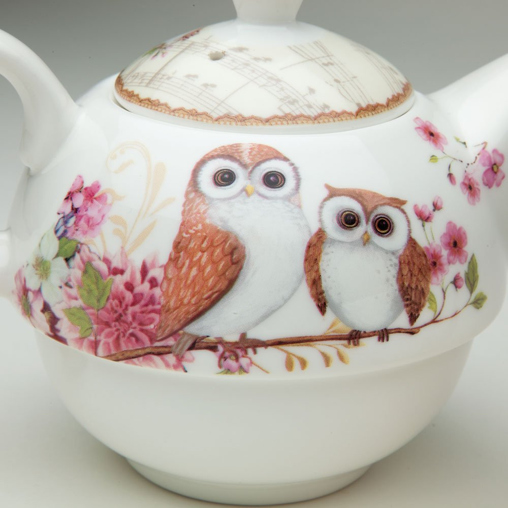 Amazon.com | Bits and Pieces - Tea For One Owls Porcelain Teapot and ...