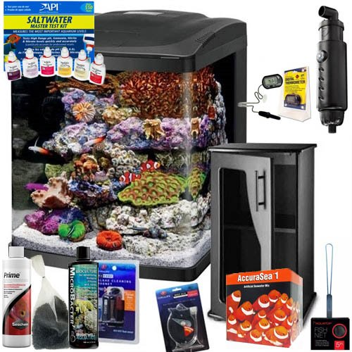 BioCube Coralife Size 16 LED Aquarium COMPLETE SALTWATER FISH ONLY (Coralife Digital Thermometer)