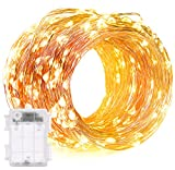 DecorNova 60 LED IP44 Waterproof Copper Wire String Lights with Timer and 3AA Battery Case, 19.7ft, Warm White