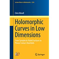 Holomorphic Curves in Low Dimensions: From Symplectic Ruled