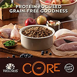 Wellness CORE Natural Dry Grain Free Large Breed Dog Food, Chicken & Turkey, 12-Pound Bag