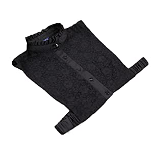 Qingsun Women's Fake Lace Stand Collar Vintage Half-Shirt Detachable Blouse False Faux Collar(Black)