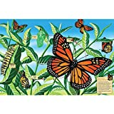 Cobble Hill Life Cycle of A Monarch Butterfly, 48-Piece