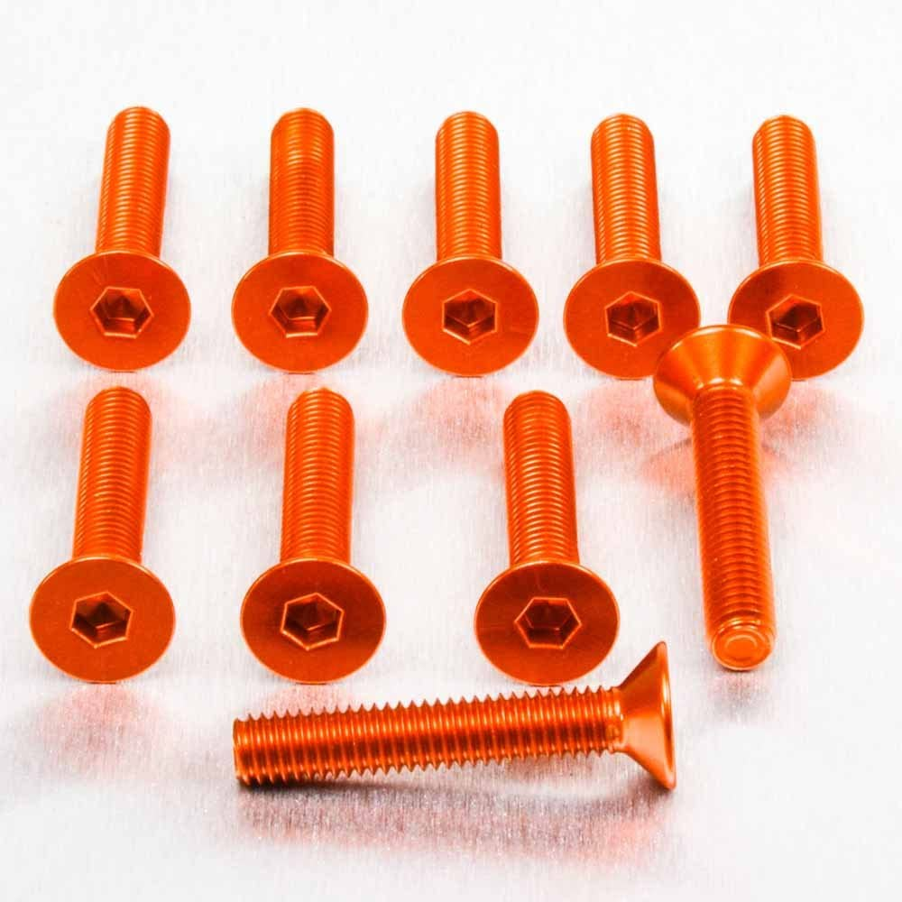 X 25/mm Pack x 10/Silber Pro-Bolt Aluminium Senkkopf Schraube M6/x 1.00/mm