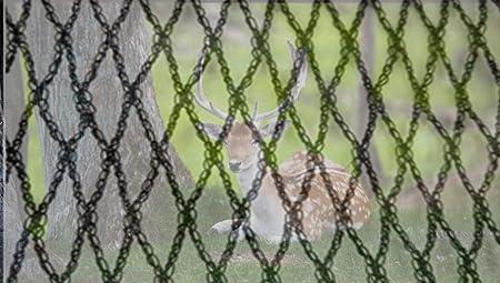 Malla Anti Ciervo con Cierres de Cremallera, Malla Protectora de jardín de Malla Fina (5/8