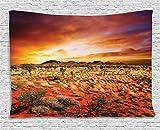 "Desert Tapestry, Sunset Over Central Australian Landscape Dreamy Dramatic Sky Scenic Nature, Wide Wall Hanging for Bedroom Living Room Dorm, 60"" X 40"", Burnt Orange"