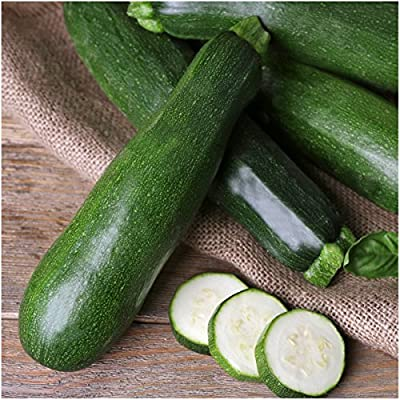 Package of 70 Seeds, Black Beauty Zucchini Summer Squash (Cucurbita pepo) Non-GMO Seeds by Seed Needs