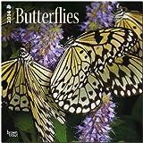 Butterflies 18-Month Calendar, , 1465009582