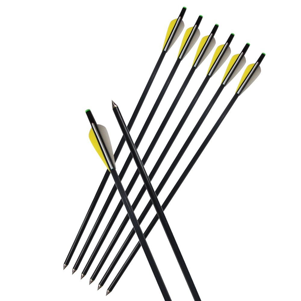 e5e10 8Pcs 20'' Fiberglass Arrows Archery Hunting OD 8mm Crossbow Bolt Arrows with 3'' Colored Vanes and Solid Unchangeable Sealed Insert Tips for Target Practice Outdoor Shooting Gift