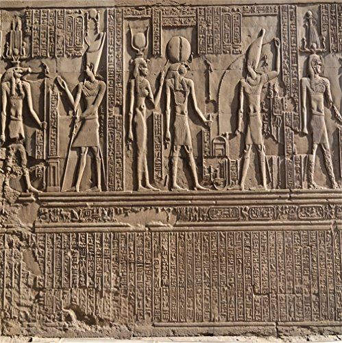 CSFOTO 8x8ft Background for Hieroglyphic Carvings On Exterior Walls of Egyptian Temple Photography Backdrop Ancient Relief Cameo Sandstone Sculpture Holiday Tour Photo Studio Props Vinyl Wallpaper