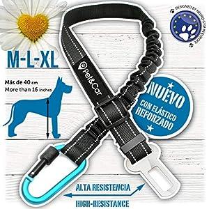 Cinturón de seguridad extensible para arnés de perro. Previene lesiones de mascota en coche por su correa elástica…