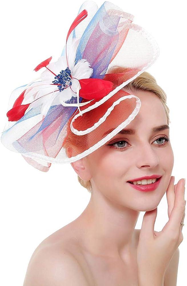 Fascinators Hat for Women Mesh Hair Clip Kentucky Derby Cocktail Headband Flower Tea Party Wedding Headwear