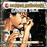 Music Is The Rod - Reggae Anthology [2 CD]