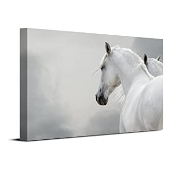Amazon.com: Royllent - Stretched and Framed Art Canvas Printed ...