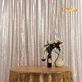 LQIAO Embroidered Sequin Fabric Backdrop Curtain 8FTx10FT Champagne Modern Window Drapes Sequin Curtain for living room/photo booth backdrop
