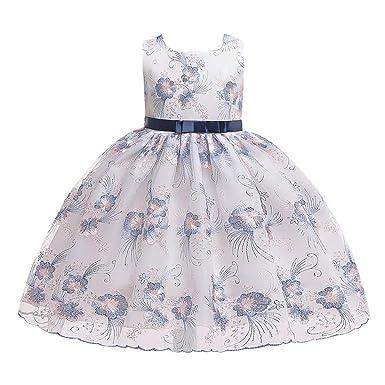 FRAUIT Vestido de Princesa de Las Niñas Vestido Bordado de Flores ...