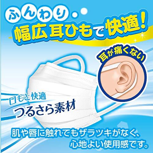 (PM2.5対応)快適ガードさわやかマスク