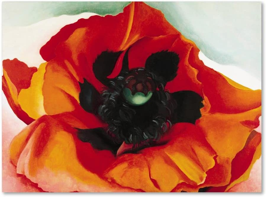 Amazon Com Poppy By Georgia O Keefe 35x47 Inch Canvas Wall Art Home Kitchen