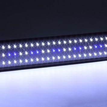 ulable bajo el agua acuario Fish Tank Pecera Luz SMD 11 W Lámpara de luz LED 50 cm: Amazon.es: Electrónica