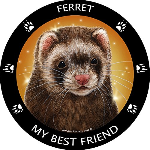 (Ferret My Best Friend Magnet)