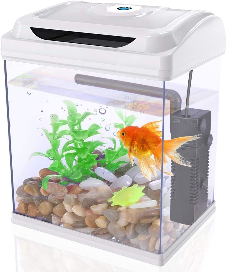 DADYPET Betta Fish Tank Aquarium Starter Kits 1 Gallon with LED Lighting, Plants, Pebbles, Pump