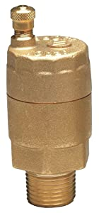 Automatic Air Vent Valve, 3/4 In, Brass