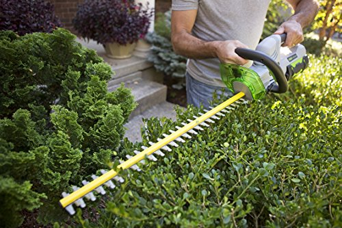 EGO Power+ HT2402 Cordless Electric Hedge Trimmer