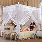 Royal- European Style Square Top Mosquito Net Three-door Encryption Thickening Single Double Bed Stainless Steel Bracket white ( Color : 32mm , Size : 2.0m (6.6 feet) bed )