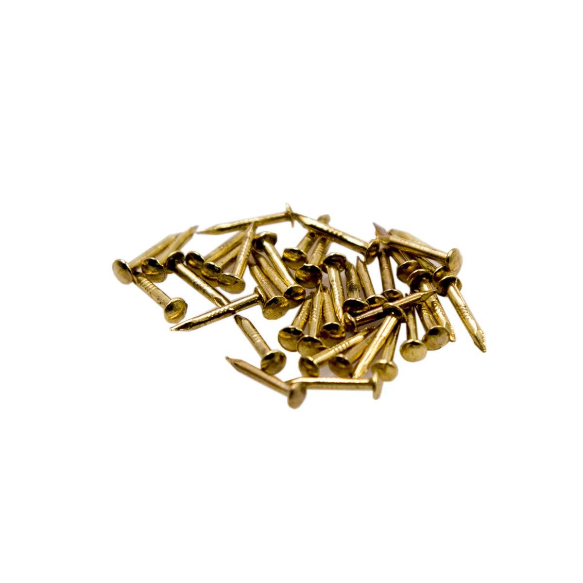 Clavos Peque/ños Tornillos Autorroscantes de Cabeza Redonda Madera Accesorios de Hardware Hechos a Mano Sujetadores 500PCS 1 X 10 mm Bronce