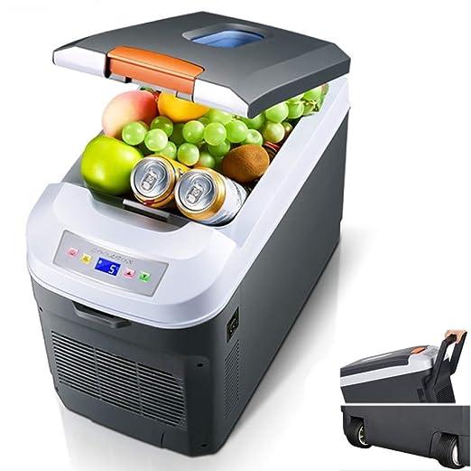 WXJWPZ Refrigerador Termoeléctrico De 35L 12v 230v 24V Nevera ...
