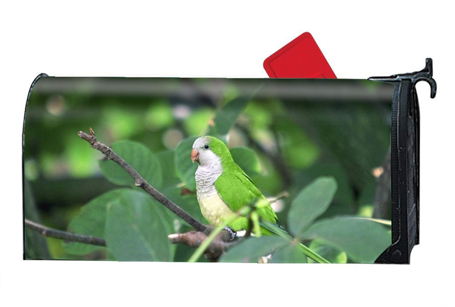 MAILL Animal Parrots Magnetic Mailbox Cover Fits Standard-Sized Mailboxes,9'' W x 21'' L by MAILL
