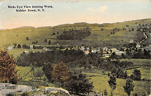 Kohler Town New York Birdseye View Of City Antique Postcard K96698