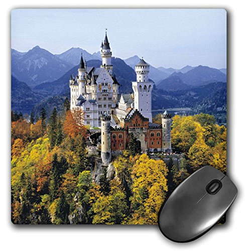 3drose-llc-8-x-8-x-025-inches-mouse-pad-ric-ergenbright-mp-81792-1