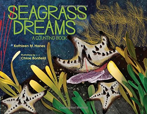 Seagrass Dreams: A Counting Book