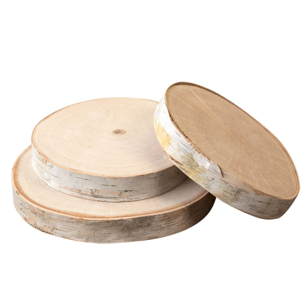 Round Birch Tree Slices, 7 inches to 10 inches, Kiln Dried Real Wood Slabs, Natural Birch Wood Slices, Rustic Wedding Decorations and Home Decor, (Set of 3)
