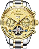 PASOY Carnival Men's Watch Automatic Tourbillon Stainless Stell Date Gold Dial Skeleton Analog Watches